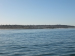 fishing Chubasco II