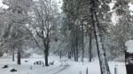 Cuyamaca Paso picacho snow