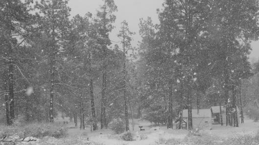 paso picacho snow