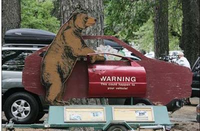 epic fail bear