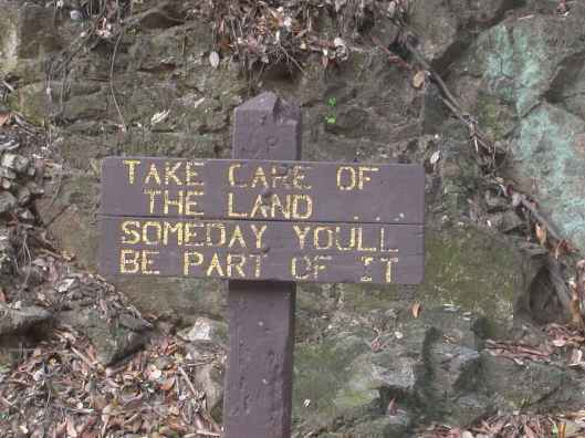 funny forest sign