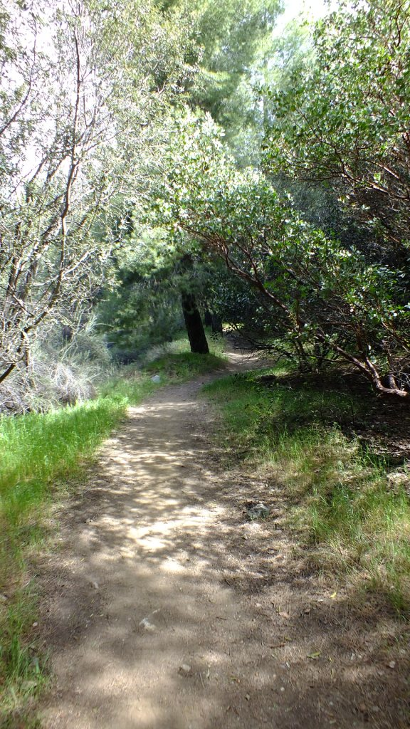Heaton Flats Nature