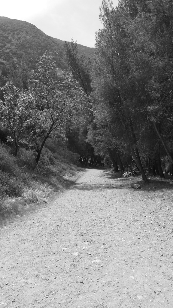 Heaton Flats San Gabriels Angeles Forest