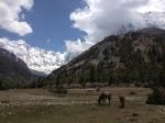 Himalayas pic 7