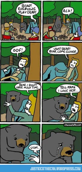 bear cartoon