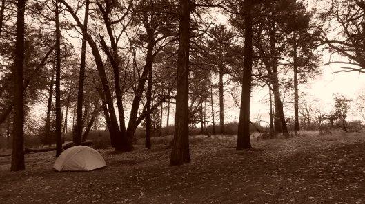 sneak peak cuyamaca camping trip