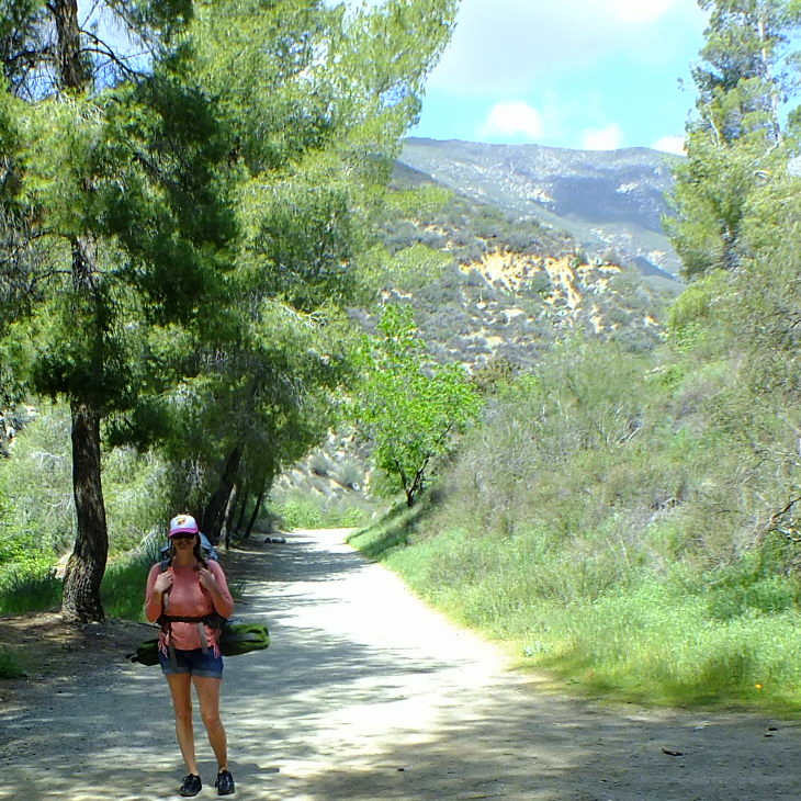 Beautiful Nature Los Angeles: Camping And Hiking Through Los Angeles