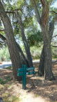 dos picos camping sign
